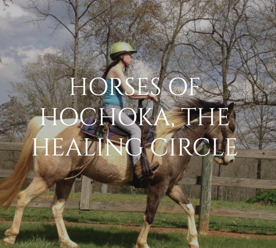 Square - Horses of hochoka
